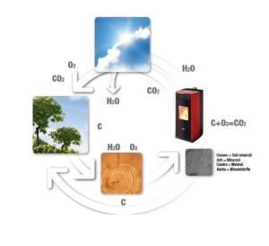 ciclo del pellet